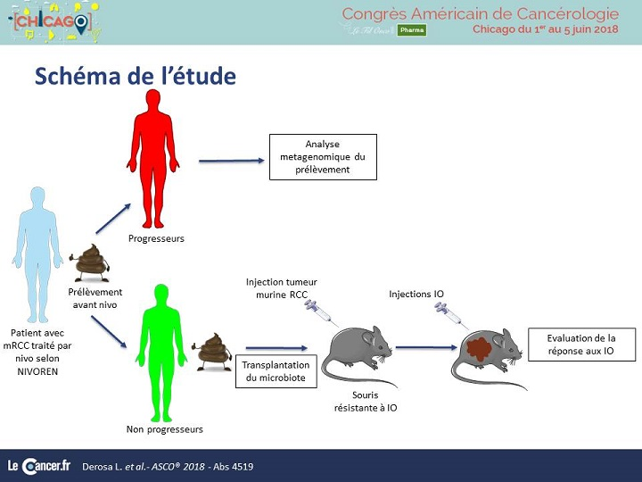 Abs 4519. Microbiote Nivoren