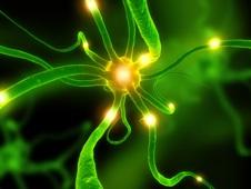 aktive neuronenzelle